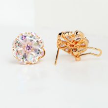 Women's Shining Rainbow Ear Clips